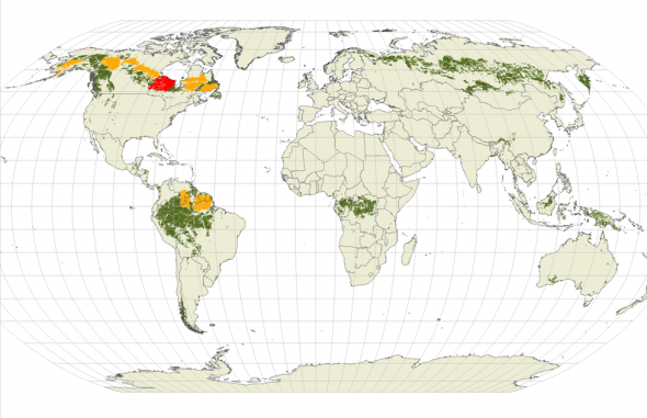 Map of world's last great intact forests